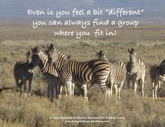 """Even if you are """"different"""" - you can always fit in somewhere!"""