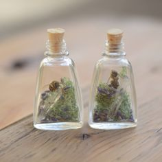 Bring a small taste of nature to your home with this small bottle containing a single bee and two quartz crystal points on a bed of green moss. Bottle and cork inches Small Bottles, Glass Bottles, Aesthetic Boy, Aesthetic Pictures, Vulture Marvel, Goblin King, Bugs And Insects, Nature Crafts, Bottle Crafts
