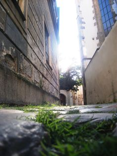 Grass and sun in Golden street at Old town