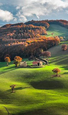Sunlit hills of Castelluccio di Norcia in Umbria, Italy • photo: Alessio Andreani on MailOnline