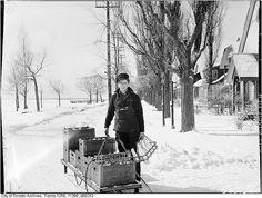 Delivering milk on Toronto Island, Canada. February 18, 1944.