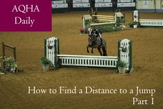 How to Find a Distance to a Jump, Part 1 Centered Riding, Natural Horsemanship, Animal Science, Western Pleasure, Animal Projects, Horse Training, Show Horses, Horseback Riding, Dressage