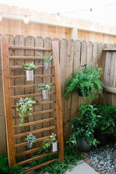 Ladder vertical garden...the perfect DIY project for anyone with a small backyard but who still wants to garden.