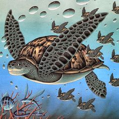 Love this Sea Turtle print!