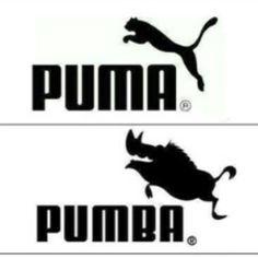 #cazzoRidi #humour #humourdemerde #lol #puma #disney #humourAnimal