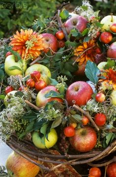 A lovely fruit and flower centerpiece for the fall.    http://25.media.tumblr.com/tumblr_maoegyZVIu1r71b95o1_400.jpg