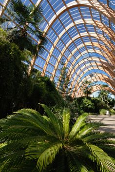 wood greenhouse