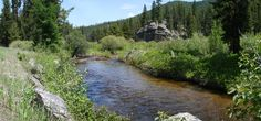 Picture of Lolo Creek in Montana.