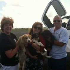 From Shelia -  Animal rescue takes a lot of people  each with their piece of the process.  6 years ago  3 beautiful puppies were in an over crowded shelter several states away with poor odds of survival. Gisele Veilleux from The Dog Liberator had them pulled. Jeff Bennett from Pilots and Paws flew them to her where a foster Kathy McIlroy cared for them until they could be adopted.  There were many other volunteers along the way that I don't know their names  but every person played a key…