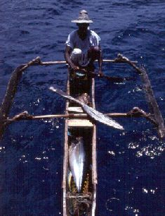 A Comorian fisherman using traditional methods to catch tuna. Offshore fish aggregating devices help increase catches of desirable fish.