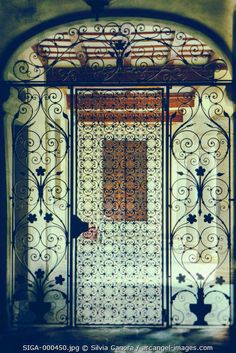 Silhouetted ornate gate- ©Silvia Ganora Photography - All Rights Reserved    www.arcangel.com #bookcovers #gate