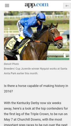 """Kentucky Derby 2016. """"NYQUIST""""- Top contender.  Nyqyist won last year's 2yr old Breeder's Cup Juvenile race.His trainer Doug O'Neil won the Ky Derby in 2012(I'll Have Another),The Preakness & was a huge favorite to win the Belmont and the Triple Crown. Then sold the horse the day before the Belmont to the Sheik .Scratched the horse and never ran again. This horse is a monster and better than I'll Have Another according to on his connection's.The Dam's bloodlines includes Raise A Native, Storm Cat, Seeking The Gold, Pleasant Colony. The Sire side includes Northern Dancer, Roberto,Danzig, Arch. This colt is breed for success and if it rains derby day and  the track comes up muddy ,it's going to be a great day for Nyqyist. Race Horses, Horse Racing, Santa Anita Park, Derby Winners, Derby Day, Kentucky Derby, Track, Success, Sayings"""