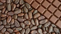 What Can Cocoa Beans Do For Your Wellbeing? - Read Full Article http://www.yourwellness.com/2013/03/what-can-cocoa-beans-do-for-your-wellbeing/