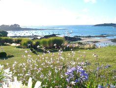A Saint-Briac-sur-Mer, en Bretagne nord, un #jardin de bord de mer: #terrasses…