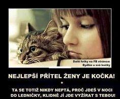 Nejlepší přítel ženy je kočka! Ta se totiž nikdy neptá, proč jdeš v noci do ledničky, klidně ji jde vyžírat s tebou!