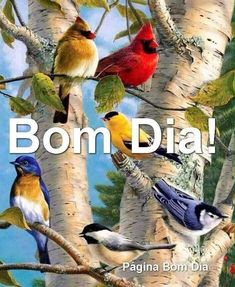 Birds in the morning Good Morning Friday, Good Morning Picture, Good Morning Flowers, Good Morning Greetings, Good Morning Good Night, Morning Pictures, Good Morning Wishes, Morning Messages, Good Morning Quotes