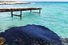 Black and Blue    Oil pollutes seawater following a spill off the coast of the Karpas peninsula, in the Turkish-occupied northern tip of Cyprus, on July 17, 2013. More than 100 tons of oil leaked into the sea in just 15 minutes when a pipeline from a tanker broke during attempts to supply a power station. The eastern Mediterranean island has been divided since 1974, when Turkish forces invaded following a coup by Greek Cypriots seeking union with Greece. One hundred tons might seem like a…