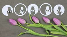 Tulpen Plotter-Freebie. Das Plotter-Freebie beinhaltet 2 Tulpen-Motive je einmal mittig und einmal seitlich im Kreis. Und da ich um die Motive noch einmal einen Kreis gezogen habe, werden daraus 8 kleine Deko-Tulpen…
