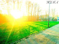 Die Sonne, Natur, Schönheit, morgen, Sonnenaufgang, طبيعة ، شروق الشمس، الشمس