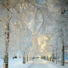 Kiruna, Sweeden
