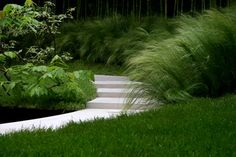 Grass garden .PS: I follow u back