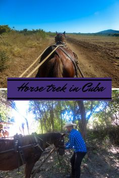 Horse trek in Trinidad Cuba I thought it was going to be a leisurely ride in the countryside how wrong was I?