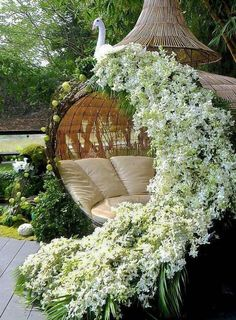 I want this chair..maybe with confederate Jasmine