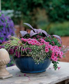 This low bowl is the perfect setting to show off 'The Art of Texture', a container recipe rich with color and unique plants.