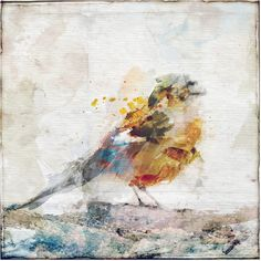 Watercolor Bird I Canvas Wall Art ($172) ❤ liked on Polyvore featuring home, home decor, wall art, bird canvas wall art, bird wall art, animal wall art, canvas home decor and bird home decor