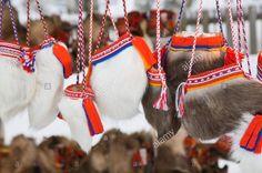 Fur handicraft Laplander culture Textile handicraft Jokkmokk fair Laponia Sweden.