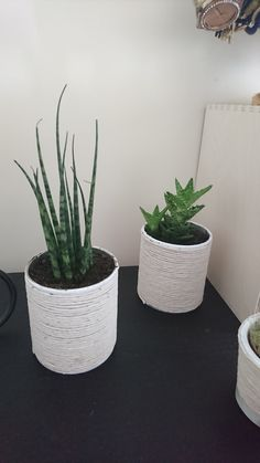 PLANT POTS! Made out of small Pringles cans! Painted white and with glue you put string around it and done :)