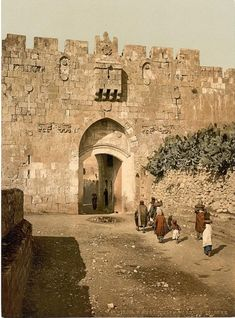 St. Stephen's Gate, Jerusalem. The Lions' Gate, also St. Stephen's Gate, is located in the east wall.  The entrance marks the beginning of the traditional Christian observance of the last walk of Jesus from prison to crucifixion, the Via Dolorosa. Near the gate's crest are four figures of leopards, often mistaken for lions, two on the left and two on the right.