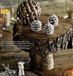 The perfect desert stand for my outdoorsy style