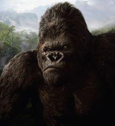 New Image from KONG: SKULL ISLAND Gives First Look at Kong!