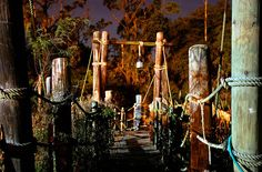 An Abandoned Disney park!  You can find the remnants of Discovery Island off the coast of Florida.  Disney had to shut it down due to...get this...VULTURES.   But the skeletons of the park remain...