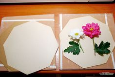 press flowers in the microwave with cardboard, coffee filter, and a plate