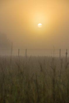 Misty morning | Flickr - Photo Sharing!