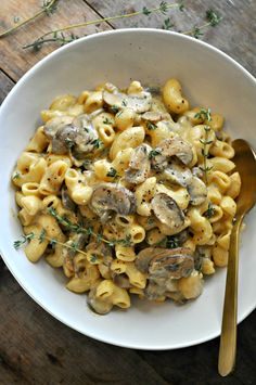 Vegan Mushroom Stroganoff Mac and Cheese - Rabbit and Wolves. We made this and liked it! Next time we want to add some form of spicy kick to it (it's the Cajun in us). We made this with the Banza chickpea pasta and it was comforting and yummy.