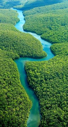 The Amazon, Equador. The Amazon rainforest is the last green frontier on earth. It is estimated that 20 percent of the earth's oxygen is produced in the area.