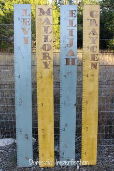 DIY Rustic Growth Charts