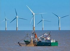 Jacob Securities to Arrange Offshore Wind Project Financing for Beothuk Energy Project Finance, Offshore Wind, Energy Projects, Safe Haven, Renewable Energy, Wind Turbine, Wind Farms, Management, Windmills