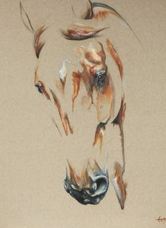 striking horse painting like you have never seen before… I am sure, you will be stunned to see these horses, because I was just gazing at them, and that' Horse Drawings, Animal Drawings, Art Drawings, Horse Head Drawing, Drawing Animals, Painted Horses, Arte Equina, Horse Sketch, Horse Artwork