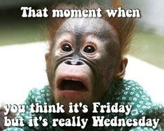 That moment when you think it's #Friday but it's really Wednesday.... #HappyHumpDay