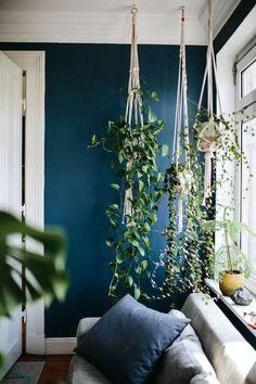 Pour donner un style urban jungle à son appartement, rien de mieux que les pots suspendus en macramé sur un mur bleu canard dans le salon