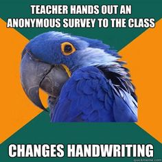 Paranoid Parrot... lmbo, I remember this