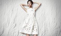 a dolce and gabanna dress