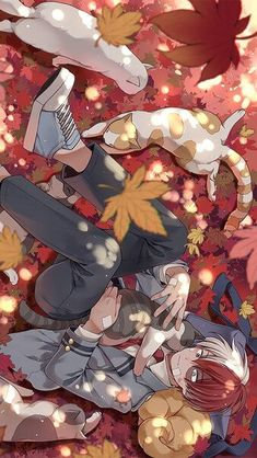 Free Download Todoroki Wallpaper Hd Cool Anime Wallpapers Anime Wallpaper Hero Wallpaper