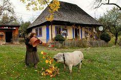 Romania - Carpathian Garden - photo by Mihai Grigorescu Ursula, Albania Travel, World Icon, Visit Romania, Native Country, Europe, Bucharest, Miniature Houses, Beautiful Places To Visit