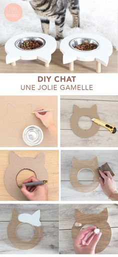 CAT DIY : Create a cute bowl for stand your cat! DIY CHAT : Créez un joli porte gamelle pour votre chat! Puuurfect