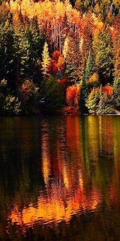 Reflection to the Lake of Autumn / Autumn